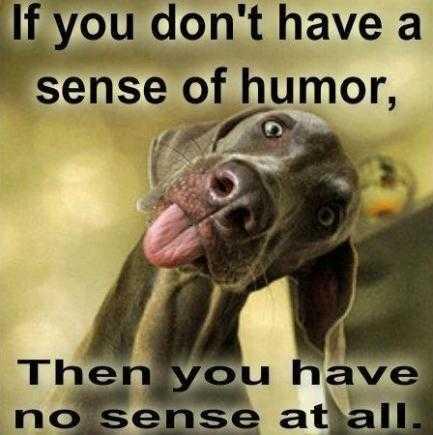 simtul-umorului-ne-poate-proteja-de-stres-ce-spun-specialistii-35646.jpg